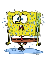 Sweat-Bob